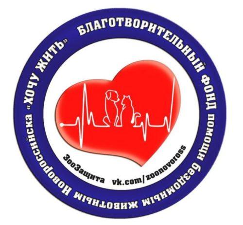 Стартовало размещение социальной рекламы благотворительного фонда «Хочу Жить» на билбордах в Новороссийске