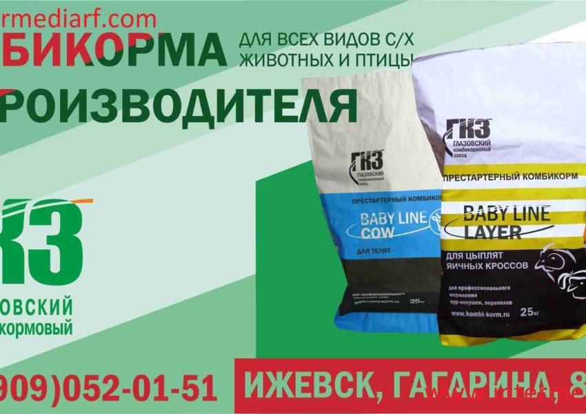 В рамках тендера стартовало размещение рекламыООО Глазовский комбикормовый завод нащите 3×6 мв городе Ижевск (1)