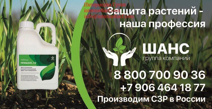 Билборд 2021 Воронеж